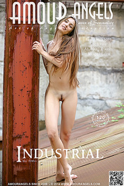 She is a naked teen vessel of joy bringing you nothing but her teen beauty with a great smile and her long brown hair.