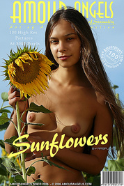 Nude slim teen with a hot tight body and nice breasts having fun among sunflowers
