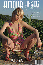 Splendid nude babe is having a walk in cornfield without any article of clothes at daytime and feels quite comfortable.